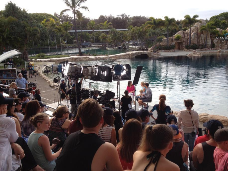 <p>Channel 7 at Seaworld</p>